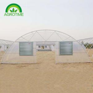 China Best Price Factory Direct sale  2019 single tunnel greenhouse with  Film Cover and  hydroponic growing systems on sale