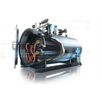 Stainless Steel Thermal Oil Boiler , Durable Electric Thermic Fluid Heater