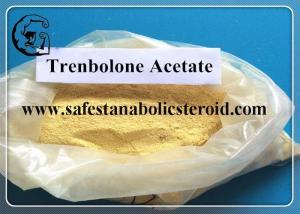 China Trenbolone Acetate , Raw Yellow Powder Einecs No. 233-432-5 UPS Standard on sale