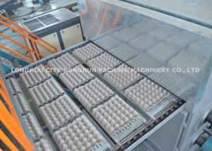 China Paper Pulp Molding Machine Making Egg Carton / Egg Tray 4000 PCS / H on sale