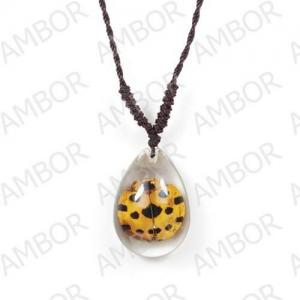 China Fashion Jewelry,Real Insect Ambor Necklace on sale