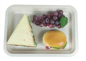 China Rectangle Biodegradable Food Trays on sale