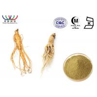 China Health Care Korean Red Ginseng Powder , Asian Female Ginseng Liquid Extract on sale