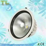 30W COB LED Downlight with CE & RoHS