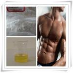 China Muscle Gain Injectable Steroid 360-70-3 Nandrolone Decanoate / Deca wholesale