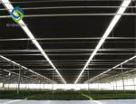 Auto Blackout Light Deprivation Galvanized Steel Greenhouse Easy To Assemble