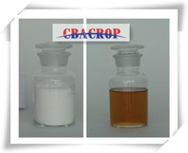 China Lambda-cyhalothrin 95%TC, 10%EC, 5%EC, 2.5%EC on sale