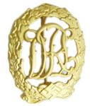 Insignes de Pin en métal de la guerre mondiale de l'Allemagne 2 avec la finition d'or plaqués