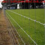 Prairie Fence Wire Mesh For Sheep/Cow/Cattle fence mesh/250g/m2 zinc coated 3.0mm Weaving Mesh Galvanized Cattle fence
