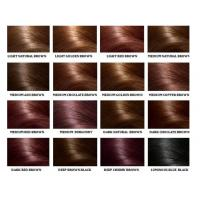 China Human Hair Color Ring Chart For Black Women High Temperature Fiber on sale