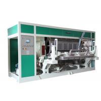 Waste Paper Egg Tray / Egg Carton / Fruit Tray Production line 6000Pcs / Hour
