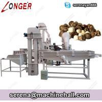 High Capacity Moringa Seed / Pine Nut Shelling and Peeling Machine Product Line