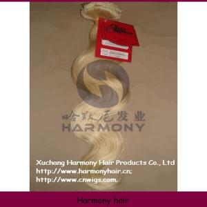 China Harmony Quality kinky hair clip on extensions on sale