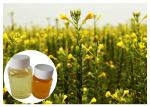 China Evening Primrose Seed Natural Plant Extract Oil For Women Menopause GC Test wholesale