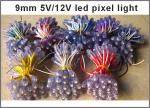 2021 New arrival High Quality 5V/12V 9mm Led Pixel strings For Lighting Letters Warranty 3 Years China Manufacture