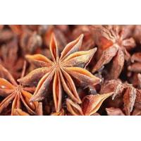Fructus anisi stellati Extract, Star Anise Extract, 10:1, Traditional Chinese herb Extract, 100% natural high quality