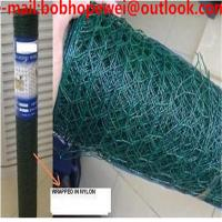 China chicken wire manufactures/wire netting fence/poultry netting 50*50/hexagonal wire mesh chicken/chicken wire sizes on sale