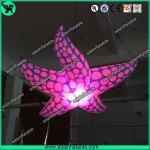 New Brand Event Decoration Lighting Blue Inflatable Starfish/Ocean Event Decoration