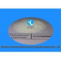 Natural Raw White Powder  Testosterone Cypionate Steroids / Test Cyp 58-20-8