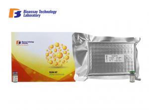 China FGF - 23 Sandwich Rat ELISA Kit , ELISA Test Kit With Strong Sensitivity on sale