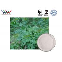Pharmaceutical Organic Stevia Leaf Extract , Natural Stevia Extract Sweeteners For Diabetics