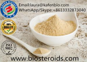 China High Purity Pharmaceutical Raw Materia Cinnamon Plant Extract Caffeic Acid CAS:331-39-5 on sale