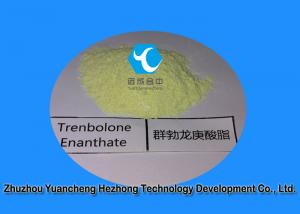China Highly Effective  White Powder Trenbolone Enanthate for Muscle Building  10161-33-8 on sale