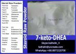China Steroid Raw Powder 7-Ketodehydroepiandrosterone (7-keto-DHEA) For Bodybuilding Cas 566-19-8 wholesale