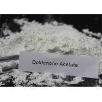 Healthy Boldenone Powder , Boldenone Acetate Steroids Bodybuilding CAS 2363 59 9