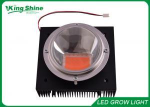 China High Powered 100 Watt Cob Led Plant Grow Lights Diy For Flowering / Tomatoe on sale