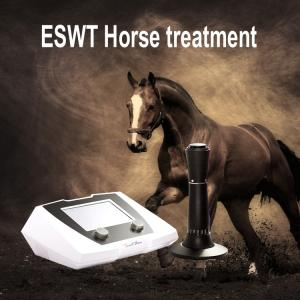 China Equine veterinary animal shock wave therapy machine for horse on sale