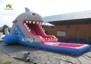 China 6m High Shark Inflatable Water Slide With Pool / Small Blow Up Slide For Kids on sale