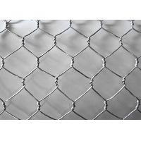 China Galvanized PVC Hexagonal Wire Mesh , 0.7mm*13mm*13mm Power Coated Bird Netting on sale