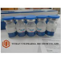 2g Cefotaxime Sodium Injection Powder Anti Infective Drugs USP / BP Standard