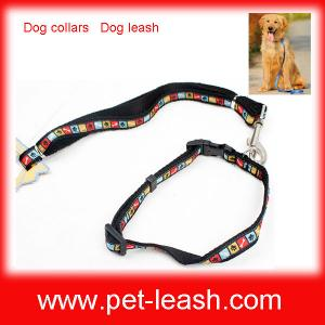 China Dog collars Dog leash QT-0080 on sale