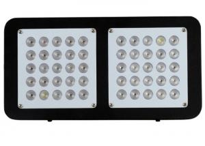 China high power 250w high quality indoor commercial led plant growing Light Full Spectrum for Indoor system garden greenhouse on sale
