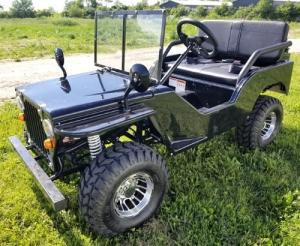 China For Sale 125cc Mini Gas Golf Cart BLAZE Edition Lifted on sale