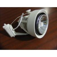 Removable LED Track light spotlight with Par 30 and E27base Plastics