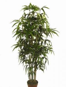 China Artificial Plants Bamboo Trees on sale