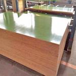 Architectural Grade Plastic Laminated Plywood Panels First Class E0 E1