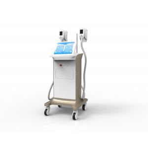 China Manufacturer Hot Sale Cryolipolysis Freezing Fat Removal Equipment with 2 Handles on sale