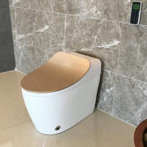 China Sanitary Ware Portable Bathroom Modern New Design Gold Intelligent Toilet Seat Cover With All Self Clean System