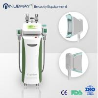 China import cheap goods from china cryolipolysis machine for fat reduction on sale