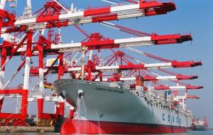 China Usa Freight Shipping Forwarder Services To San Francisco , Ocean Freight Logistics on sale