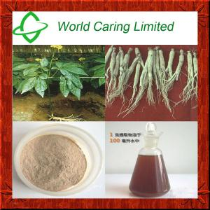 China Wholesale Powdered Ginseng Extract Solvent Extraction HPLC for Women's health on sale