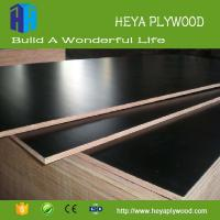 Laminate 9mm 12mm 15mm 18mm plywood chinese wholesale companies
