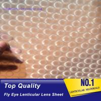 PLASTICLENTICULAR fly-eye lenticular sheet lens array good quality 0.5MM PP fly sheet printing film lenticular dot lens