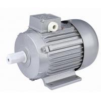 Asynchronous Motor (YS/YU/YYSERIES)