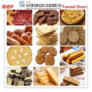 China SAIHENG biscuit baking tunnel oven / bread baking oven / pizza baking tunnel oven on sale