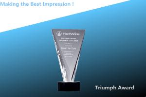 China crystal triumph award/acrylic triumph award/crystal triumph trophy/acrylic trophy on sale